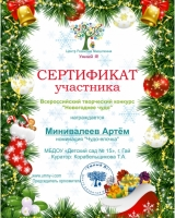 Сертификат Минивалеев