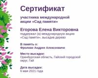 sertifikat-v-pamjat-o-frolove-andree-alekseeviche_page-0001