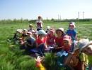 Весенний поход