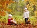 """Развивающие игры для детей по теме """"Осень"""""""