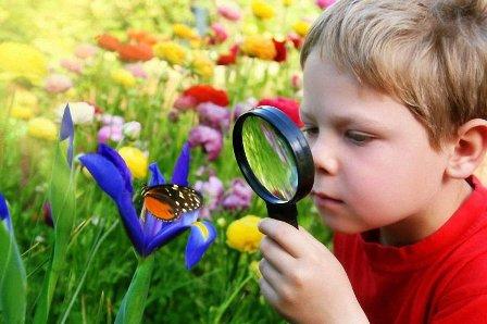 Ребенок-боится-насекомых-как-исправить-ситуацию2